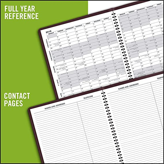 Amazon.com : AT-A-GLANCE 2019 Monthly Planner, 9