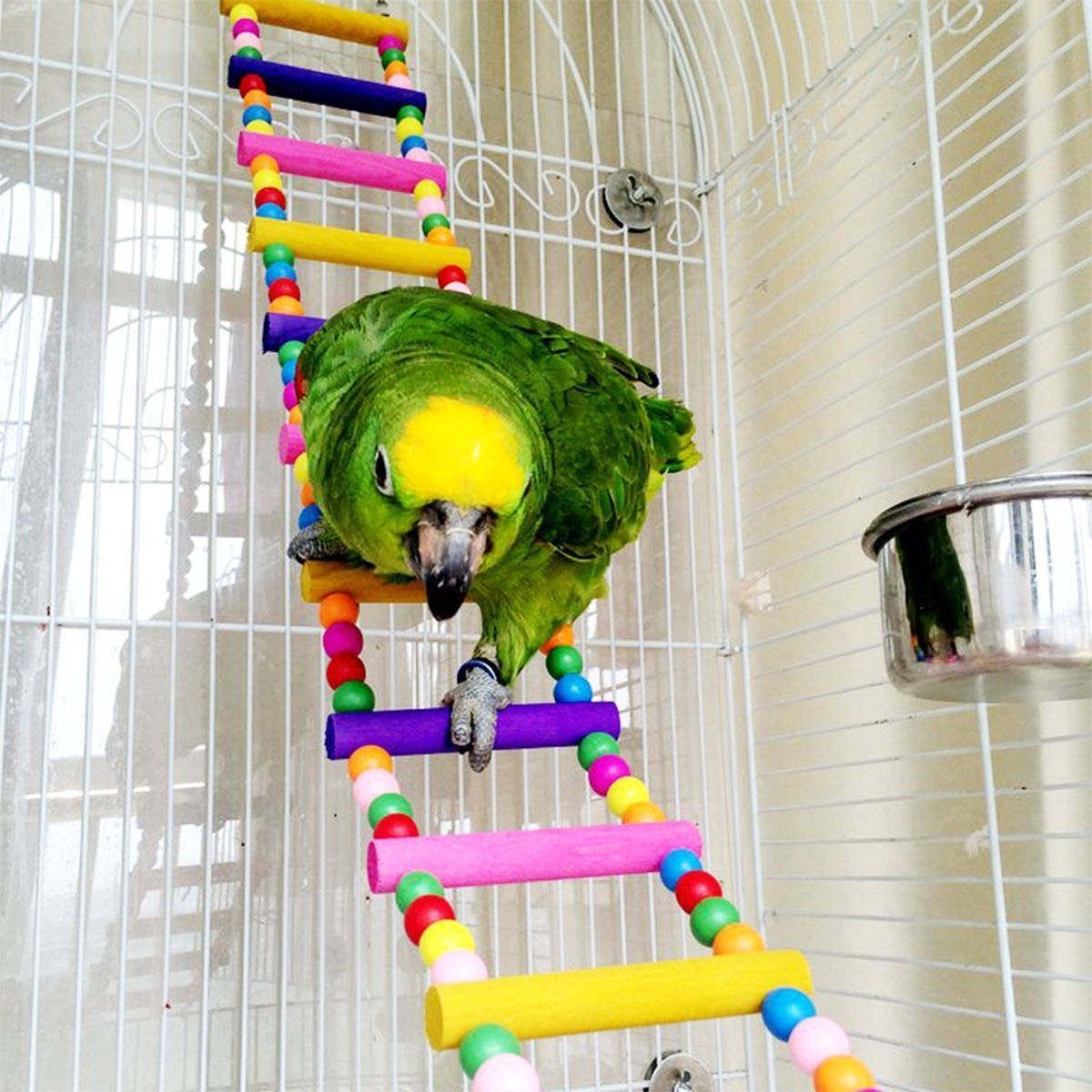 OnePlus Colorful Ladder Bird Toy, Flexible Ladders Wooden Rainbow Bridge for Parrots, 4 Inch W by 31.5 Inch L by OnePlus