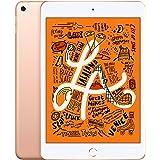 Apple iPad Mini 5 2019 (Versão WiFi, 64GB, Dourado)