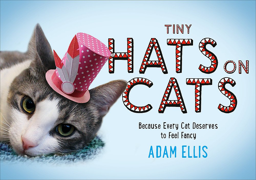 Tiny Hats on Cats ebook