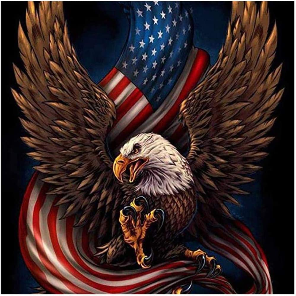 DIY 5D Diamond Painting Kit for Adult Kids, Embroidery Painting for Home Wall Decor Painting Arts Craft, Eagle USA Flag, 11.8x11.8inch