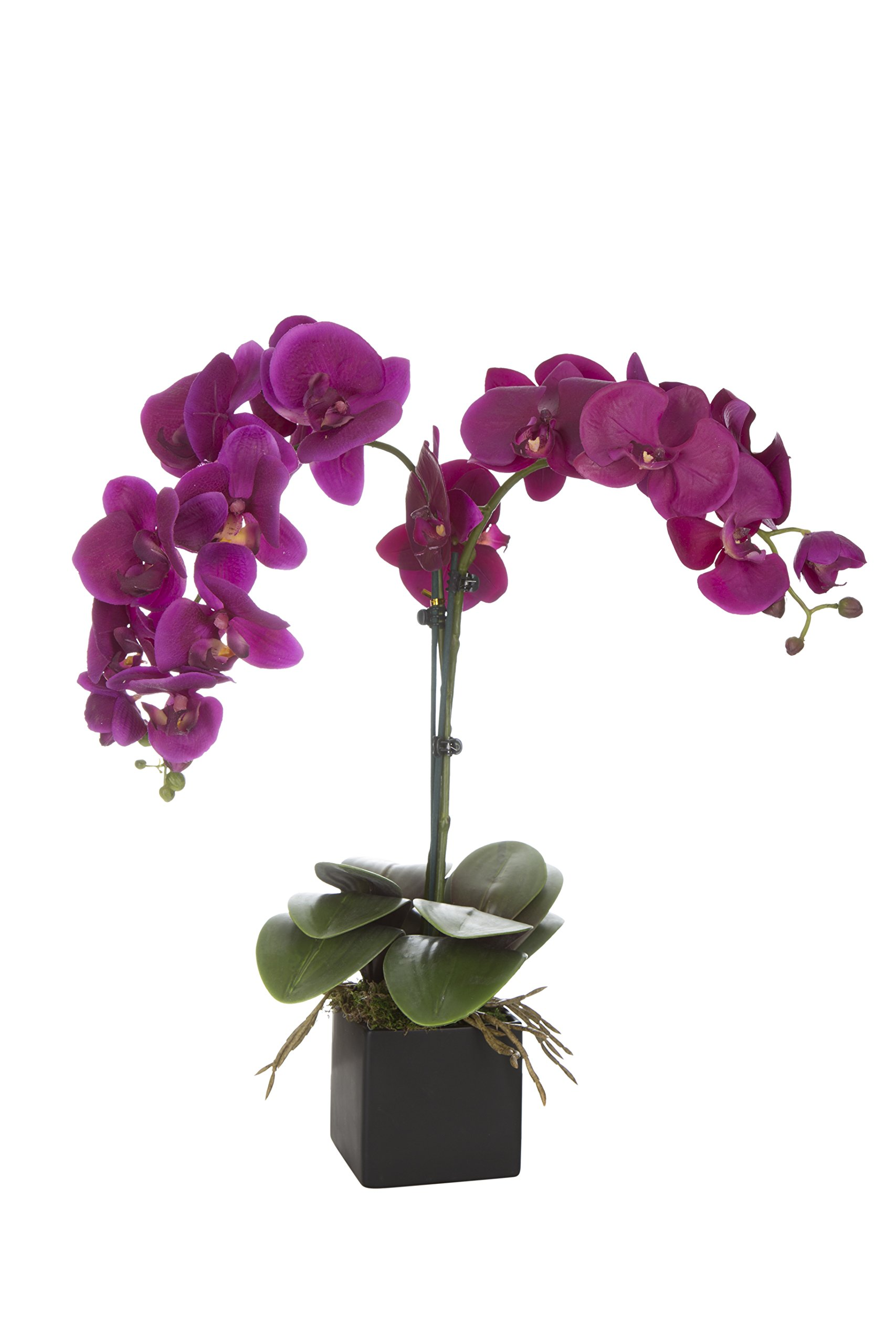 SilkenBloom Artificial Plum Silk Orchid Plant in Urban-Style Matte Black Square Pot