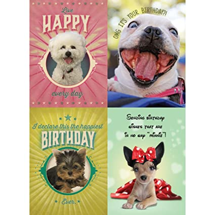 Amazon Tree Free Greetings Cute And Happy Dog Birthday Card