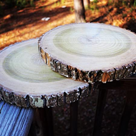 Natural wood slices round basswood slabs 9 to 11 inches rustic natural wood slices round basswood slabs 9 to 11 inches rustic tree bark junglespirit Choice Image