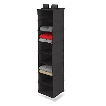Honey Can Do SFT 01246 Hanging Closet Organizer, Black, 8