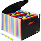 Tmei ドキュメントスタンド A4 24ポケット 自立型 収納ファイルボックス ファイルケース オフィス 書類 収納 整理 仕分け アコーディオンポケット フタ付き カラフル (ブラック)