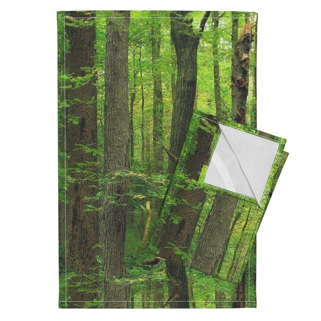 Trees Tea Towels Grove Forest Wood Birch Mural Green by Peacoquettedesigns Set of 2 Linen Cotton Tea Towels