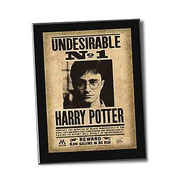 Undesirable N°1 Harry Potter: Amazon.es: Juguetes y juegos
