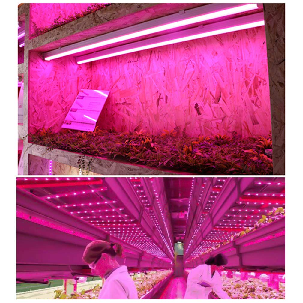 [6-Pack] LED Grow Light Strips for Plants 2FT, 60W (6 x 10W) t5 High Output  Integrated Fixture Extendable 24 Inches Grow Lights for Greenhouse, Plant