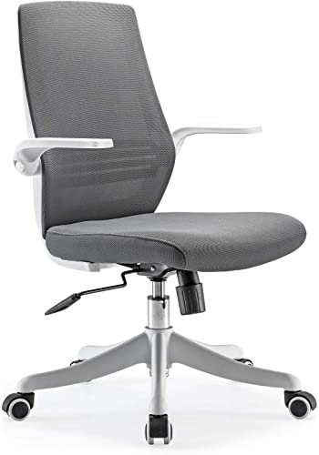 SIHOO Mesh Office Chair