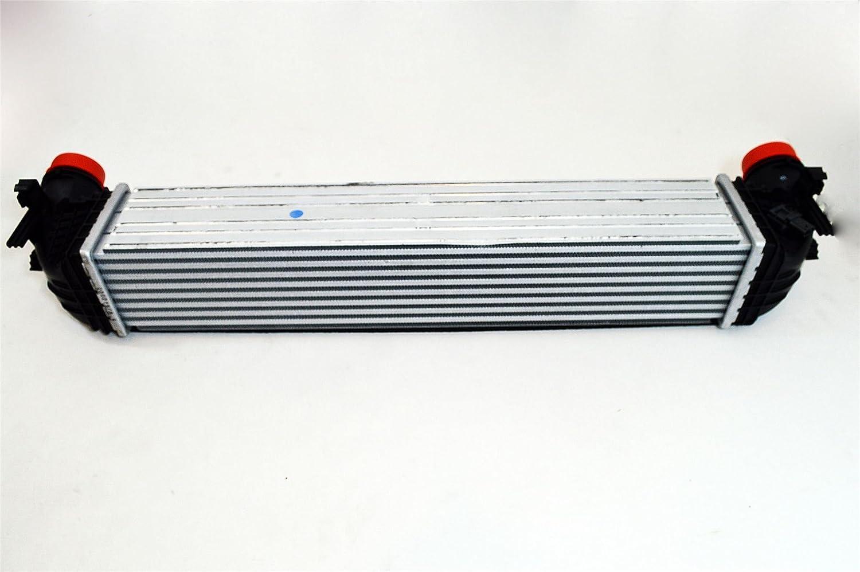39109103: Genuine 1.4 TURBO INTERCOOLER/RADIATOR COOLER - NUEVO DE LSC: Amazon.es: Coche y moto