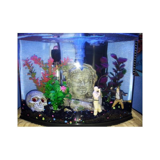 GloFish Aquarium Kit with Blue LED Light, 5 Gallon