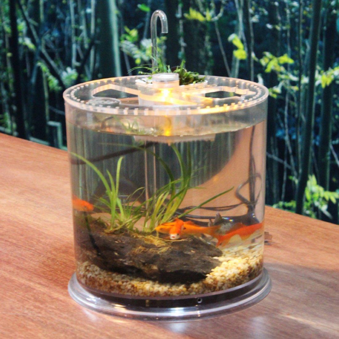YAHAMA pescado Acuario LED luces en forma de columna tablero Acuario pequeña tortuga Forro Box: Amazon.es: Productos para mascotas