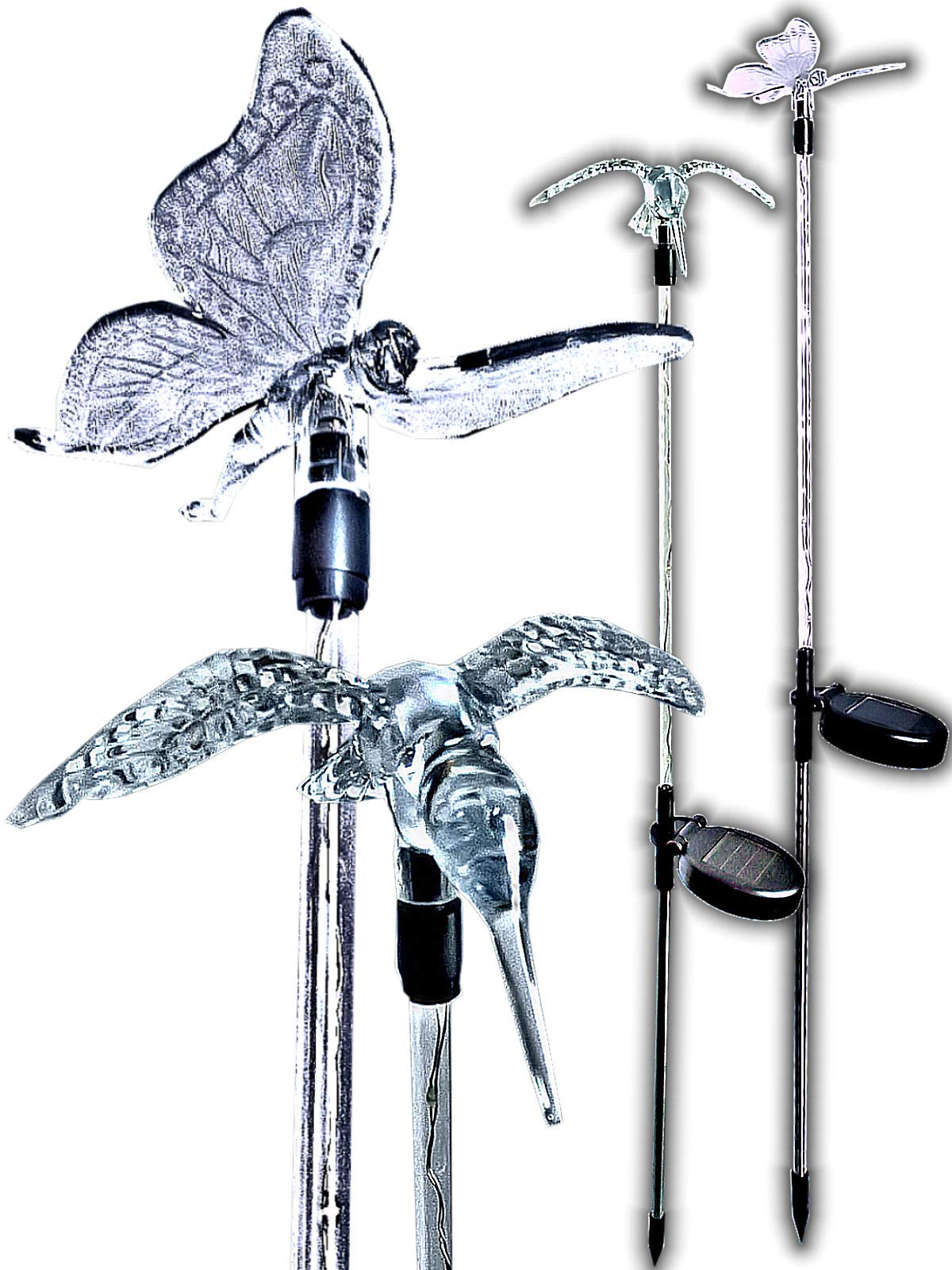 BRILLIANT AND MO Stunning Solar Hummingbird with Butterfly Garden Stakes with Lighted White LED