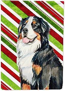 Caroline's Treasures LH9244GF Bernese Mountain Dog Candy Cane Holiday Christmas Flag Garden Size, Small, Multicolor