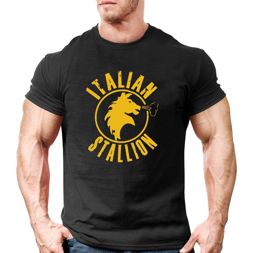 T-Shirt manica corta Maglia uomo Training Italian Stallion Rocky Balboa Boxe Boxer MMA Crossfit Body Pump Funzionale Bodybuilding Palestra Muscoli Sportswear Training Muscleshirt gym SH.MAN108