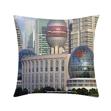Amazon.com: Almohada de lujo con diseño de arte ...