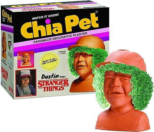 Amazon.com: Chia Pet Stranger Things – Maceta decorativa ...