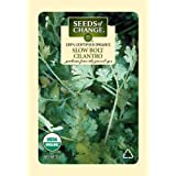 Seeds of Change Certified Organic Cilantro, Slow Bolt - 2 grams, 175 Seeds Pack