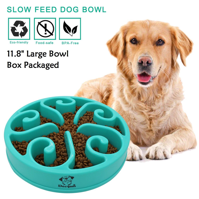 Decyam Gamelle antidérapante en forme de labyrinthe pour animal domestique - favorise une alimentation saine et une digestion lente DECYAM001m