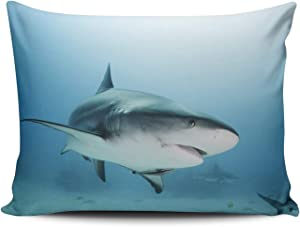 TBUFYU Pillowcases Decorative Caribbean Reef Shark with Fishing Hook Scar Standard Sofa 20x26 Inches Throw Pillow Covers Cushion Case One Sided Design Printed (Set of 1)