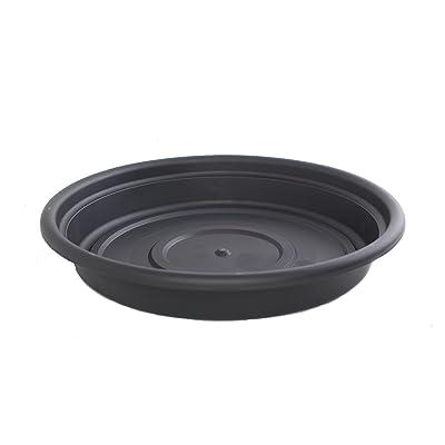 Bloem SDC16-00 Dura Cotta Plant Saucer, 16-Inch, Black : Garden & Outdoor