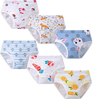 NEW Fruit of the Loom Toddler Girls 6-Pair Hipsters Underwear Size 2T E6 3T