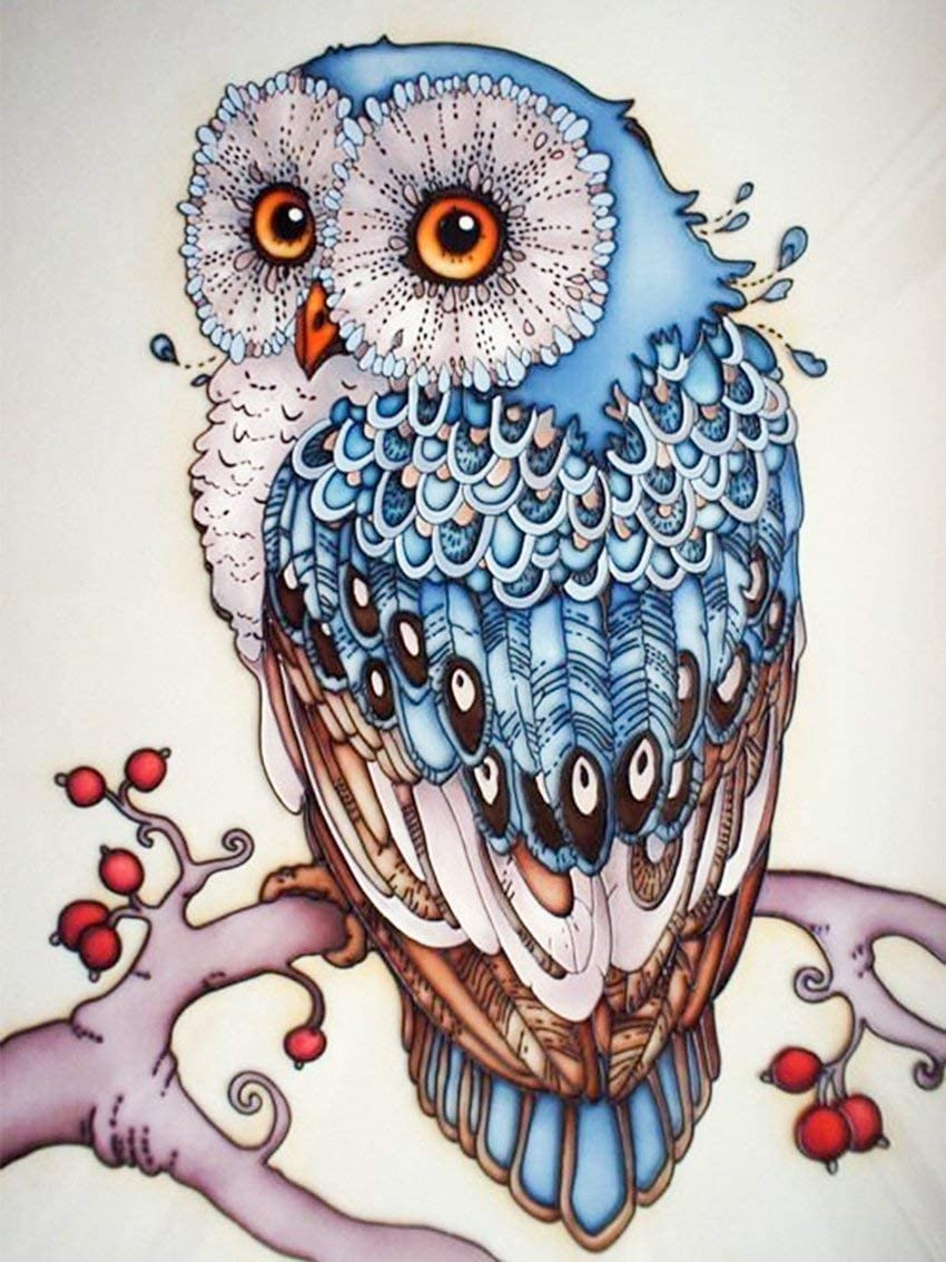 Luuyu 5D Diamond Painting Art Pintura Kit Harry Potter Owl by Number Kits Full Round Drill Rhinestone Embroidery Cross Stitch Picture Art Craft Home Wall Decor-Round Drill,30x40cm