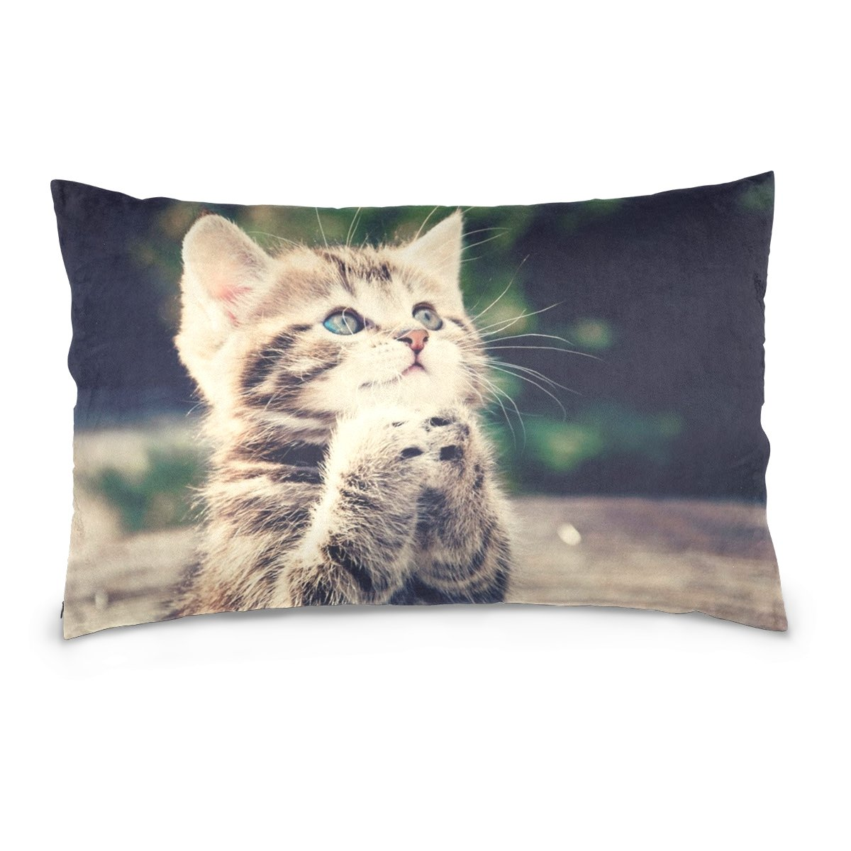Pillow Covers Pillow Protectors Bed Bug Dust Mite Resistant Standard Pillow Cases Cotton Sateen Allergy Proof Soft Quality Covers with Animals Praying Kitten Cat Pattern for Bedding