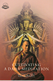 Cultivating a Daily Meditation (English Edition)