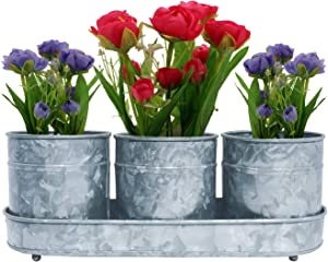 DECONOOR Galvanized Planters Set for Plants, Flowers and Vegetables | Outdoor, Indoor, Garden and Patio Flower Pot, Antique and Vintage Design, Pack of 3 with 1 Tray, 5 Inch Height