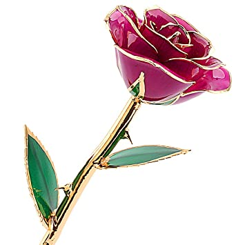 Amazon Com Zjchao Purple Gold Rose Gifts For Her Flower Dipped In