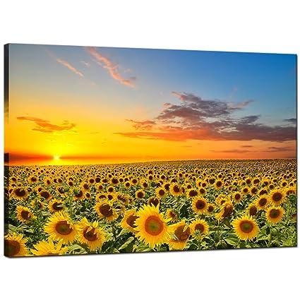 Amazon.com: Sea Charm Sunflower Canvas Wall Art Warm Color Sunrise ...
