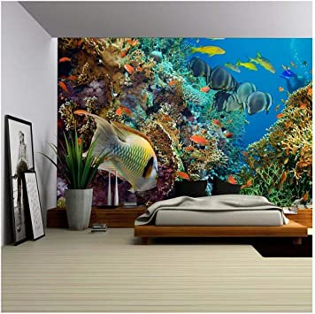 """Caribbean Fish Underwater Landscape 42/"""" x 24/"""" LARGE WALL POSTER PRINT NEW."""