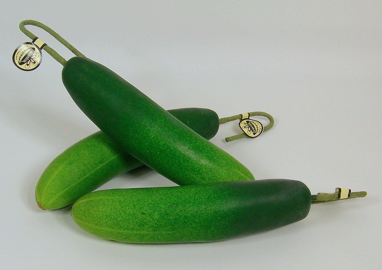 Designer-One-Artificial-Faux-Fake-Large-Cucumber-Vegetable
