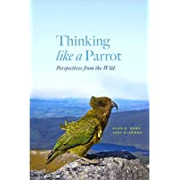 Thinking Like a Parrot: Perspectives from the Wild