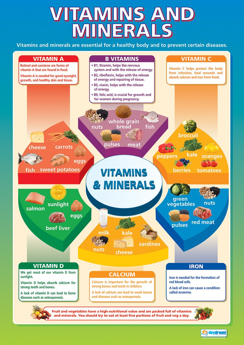 Vitamins and minerals design and technology educational wall