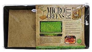 Micro Greens - Micro Greens Kit