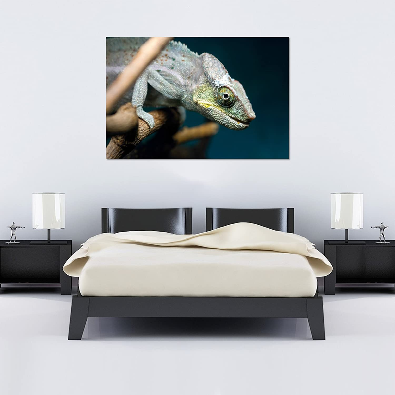 Chameleon Head sonriente sobre rama   Varios Tamaños - XL Extra ...
