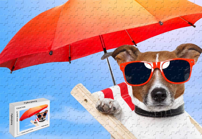 Amazon.com: 500 piezas Puzzle – Perro cachorro sol verano ...