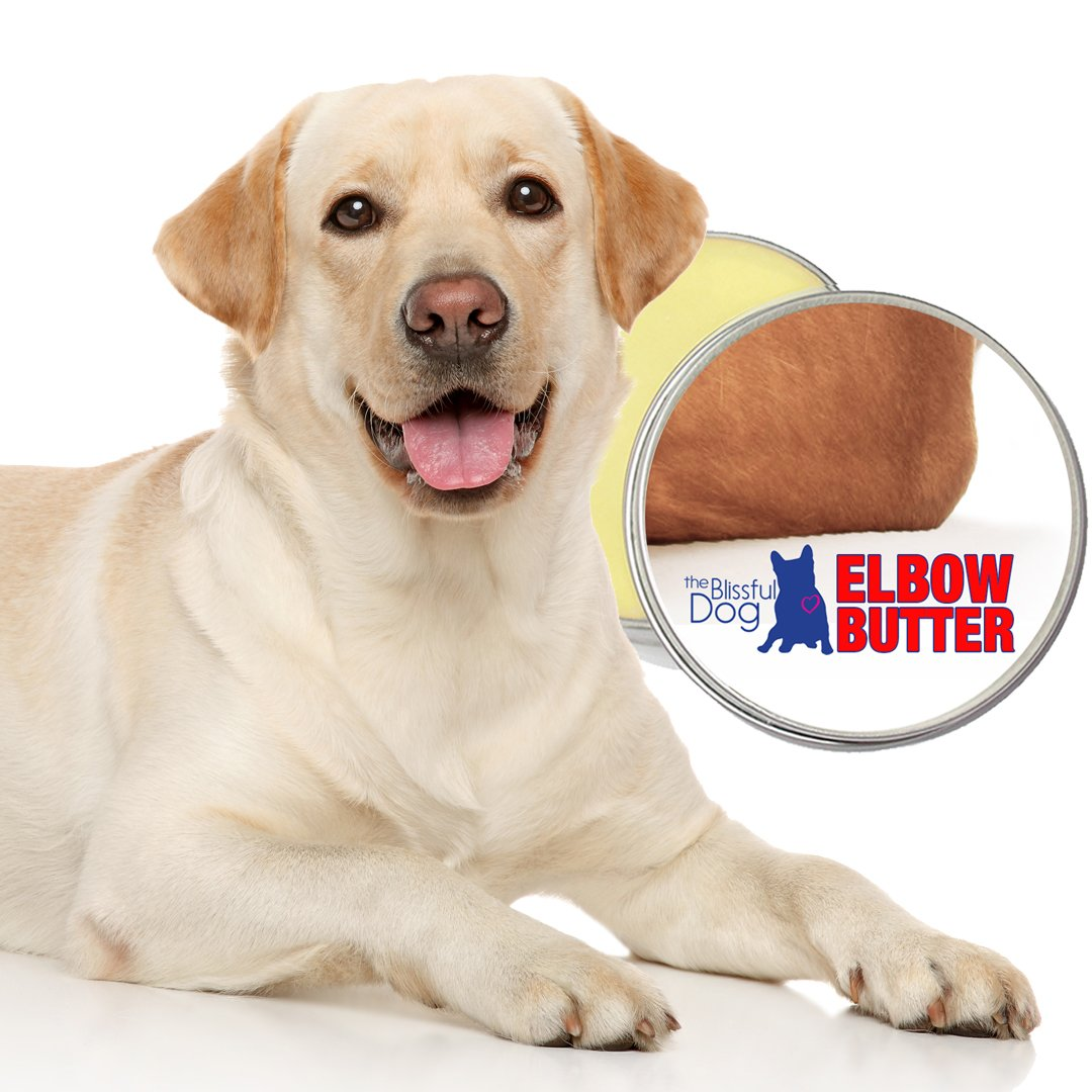 The Blissful Dog Elbow Butter Moisturizes Your Dog s Elbow Calluses