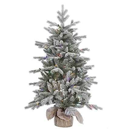 Amazon.com: Vickerman Frosted Sable Pine Artificial Christmas Tree ...