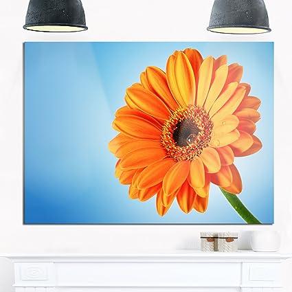 amazon com designart orange daisy gerbera flower on blue x large