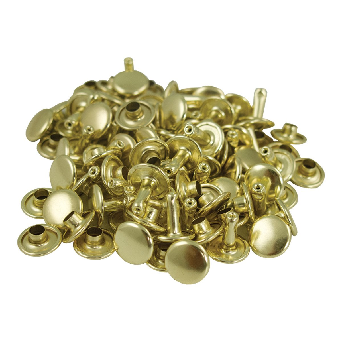 Springfield Leather Company's Gold Plate Medium Double Cap Rivets 1000pk