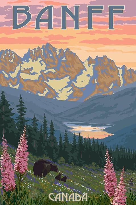 Amazon banff canada bear and spring flowers 12x18 art print banff canada bear and spring flowers 12x18 art print wall decor travel mightylinksfo