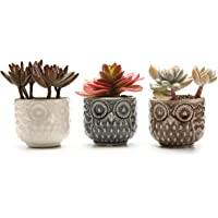 3-Pack T4U Ceramic Planter Pot for Gardener Wedding Christmas (No.01)