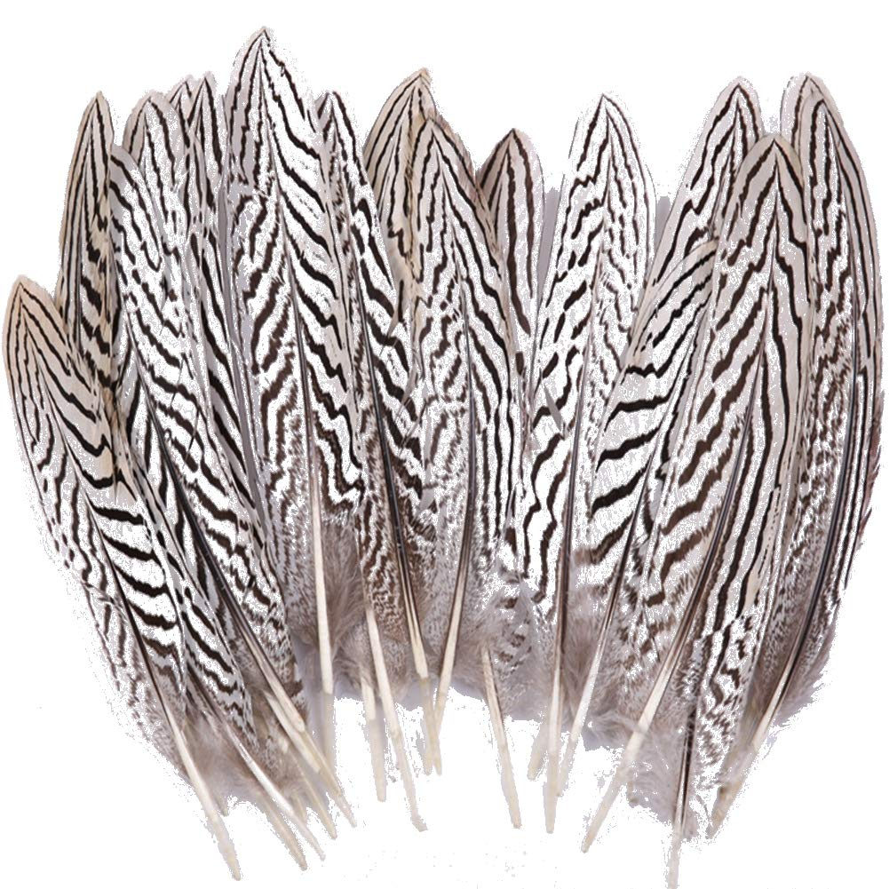 Sowder 50pcs Green Pheasant Plumage Feathers 1.5-3 Inches Home Wedding Decoration