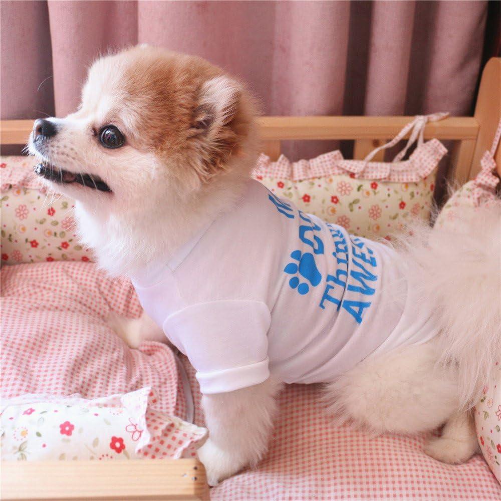 Pull Chien Solike Chemise De Sueur De Patron pour Chien Vetement De Animal Compagnie Chiot Petit Chien De Chat V/êtements T-Shirt