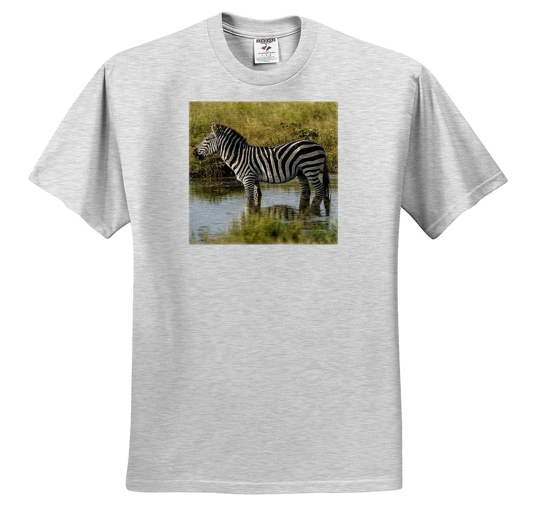 3dRose Danita Delimont Tanzania Adult T-Shirt XL Zebras ts/_312510 Zebra Africa