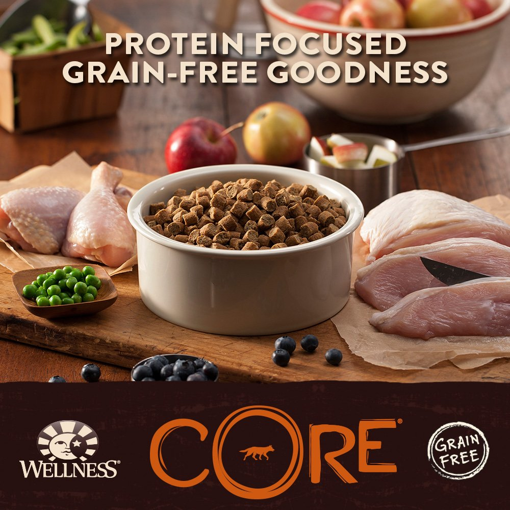 amazon com wellness core natural grain free dry dog food